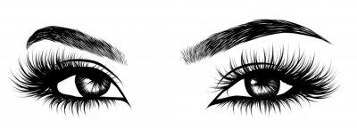 Fototapete Illustration des sexy luxuriösen Auges der Frau mit tadellos geformten Augenbrauen und vollen Peitschen. Hand gezeichnete Idee für Geschäftsbesuchskarte, Typografievektor. Perfekter Salon-Look.