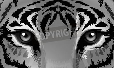 Fototapete Illustration eines Tigers mit scharfen Augen