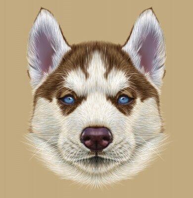 Fototapete Illustrative Porträt von Husky Welpen. Nettes Portrait des jungen kupfernen roten zweifarbigen Hundes mit hellblauen Augen.