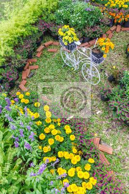 In Gemütlichen Hause Garten Vintage Weißen Fahrrad Hobel Im