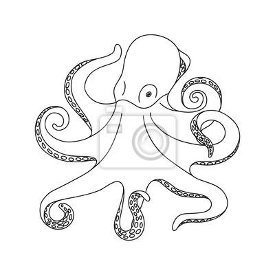 Isoliert schwarz umriss monochrome oktopus auf weißem hintergrund ...