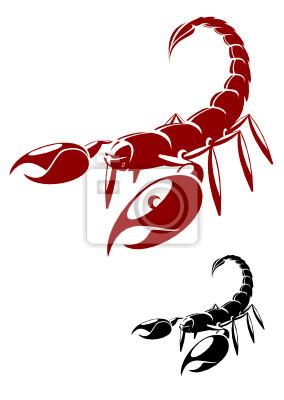 Isoliert Skorpion in Gefahr darstellen