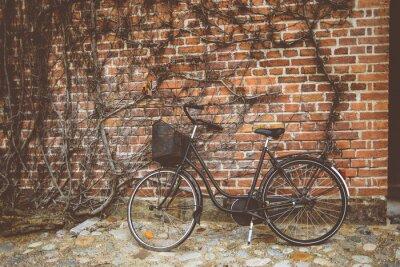 Fototapete Jahrgang Fahrrad an der Wand gelehnt