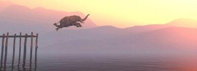 Fototapete Jump elephant