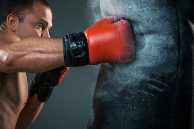 Fototapete Junge Boxer Boxen