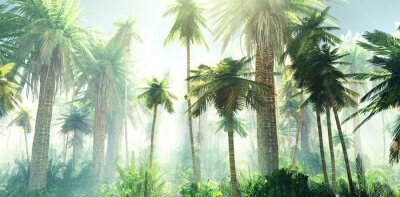 Fototapete Jungle in the fog, palm trees in the morning in the haze, rays of light in the palm trees, 3D rendering