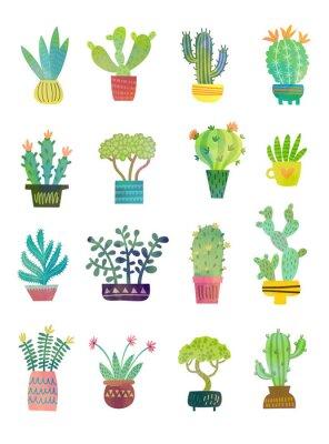 Fototapete Kaktus Aquarell Poster