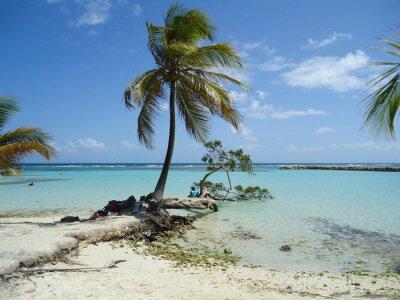 Fototapete Karibischer Strand