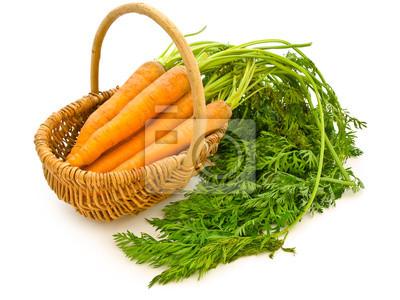 Karotten in einem Korb