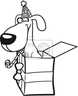 Kiste Uberraschung Geburtstag Partei Feiert Geschenke Hutte