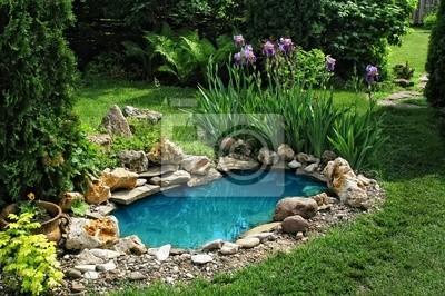 Fototapete Kleinen Teich Im Garten