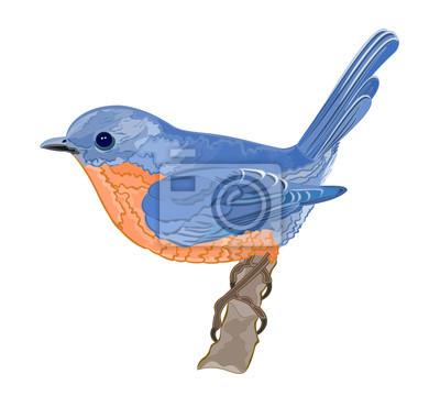 Kleiner Vogel, orange, blau