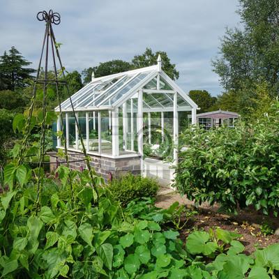 Kleines Gewachshaus Im Englischen Kleingartengarten Fototapete