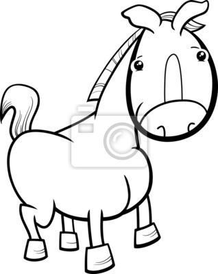 Kleines pferd oder fohlen malvorlagen fototapete • fototapeten ...