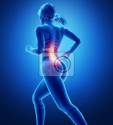 Knieanatomie fototapete • fototapeten Knorpel, Gebärmutterhalskrebs ...