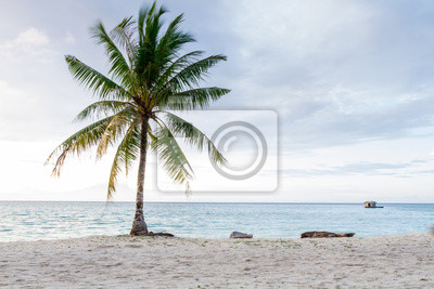 Kokos-und Strand