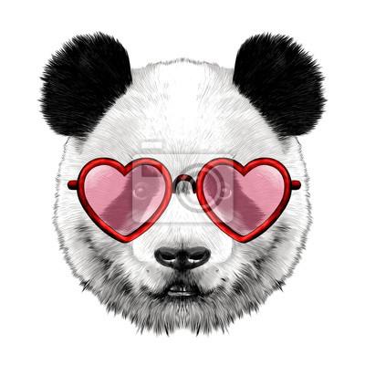 Kopf panda mit brille in herzform skizze vektorgrafiken farbbild ...
