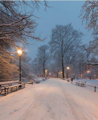 Fototapete Krakau, Polen, Gasse im Planty Park am Morgen während der Schnee gesehen.