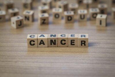 Krebs in Holzwürfel geschrieben