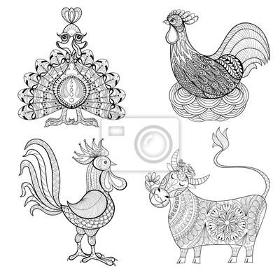 Fototapete Kuh Huhn Im Nest Hahn Türkei Für Erwachsene Malvorlage Z