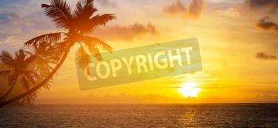 Fototapete Kunst Schöner Sonnenaufgang über dem tropischen Strand