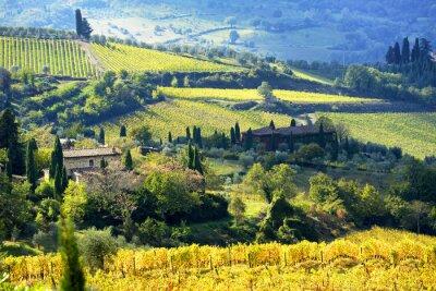 Fototapete Landschaft im Chianti-Gebiet, Toskana, Italien