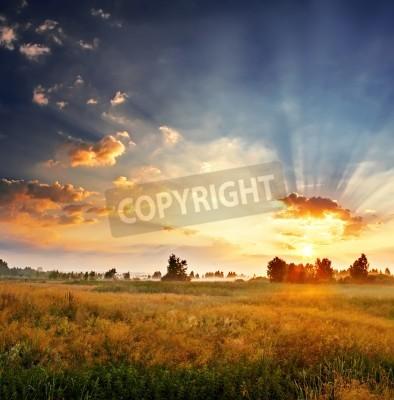 Fototapete Landschaft, sonnige Morgendämmerung in einem Feld