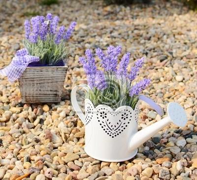 Lavendel Deko In Der Alten Metalldose Und In Den Topf Fototapete