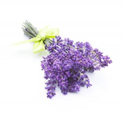Fototapete Lavendelblüten