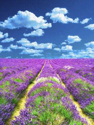 Fototapete Lavendelfeld. Ölgemälde.