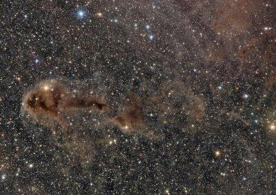 LDN 1250 dark nebula