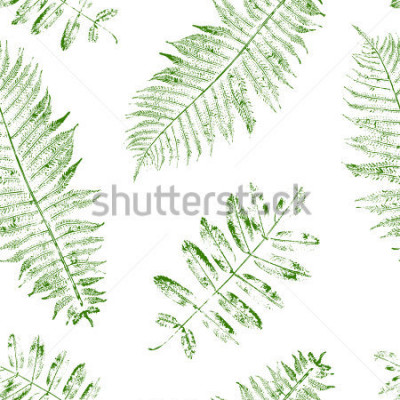 Fototapete Leaves of mountain ash and fern. Seamless pattern with leaf prints. Vector illustration.