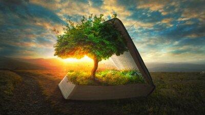 Fototapete Leben aus der Bibel