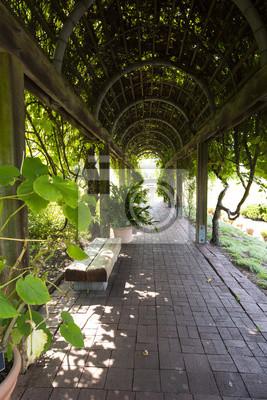 Leere Bänke auf Tunnel und geformte Pergola im Garten