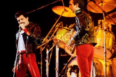 Fototapete LEIDEN, DIE NIEDERLANDE - 27. NOVEMBER 1980: Königin während eines Konzertes in den Groenoordhallen in Leiden in den Niederlanden