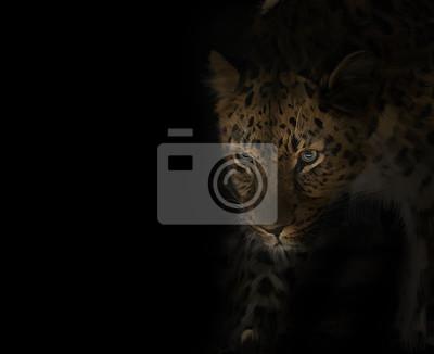 Leopard-Porträt auf Schwarzem