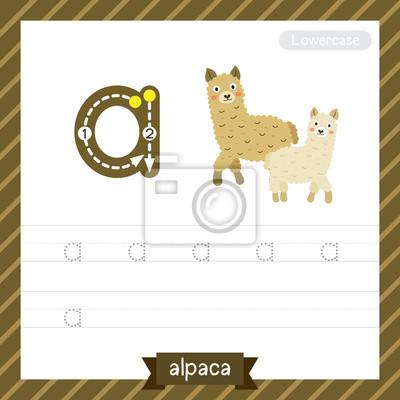 Letter ein kleinbuchstaben-übungs-arbeitsblatt mit alpaka für ...
