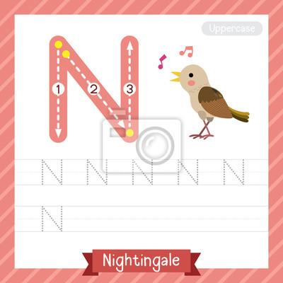 Letter n großbuchstaben übungsarbeitsblatt mit nachtigall für ...