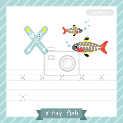 Letter x kleinbuchstaben-übungsarbeitsblatt mit röntgenfisch ...