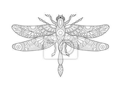 Libelle Malbuch für Erwachsene Vektor