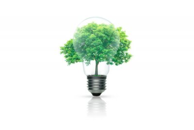 Fototapete Light bulb with green tree inside isolated on white background. Green energy concept.