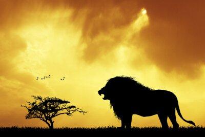 Fototapete Lion Silhouette bei Sonnenuntergang