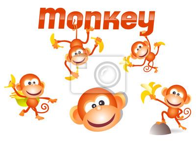 little monkey Charakter