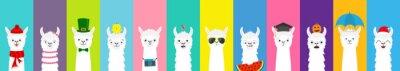Fototapete Llama alpaca set. Cute funny cartoon lama character. All seasons. Happy Valentines Christmas St Patrick day Easter Egg Bird Chicken Umbrella. Santa hat, sun Flat design Colorful background.