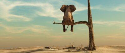 Fototapete Lonely elephant on tree