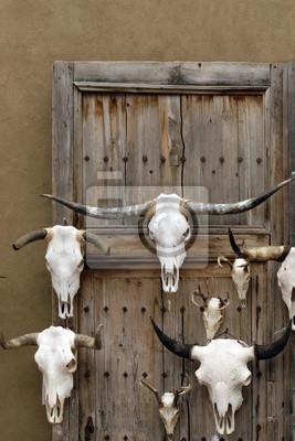Longhorn Schädel für Verkauf bei Santa Fe Craft Market