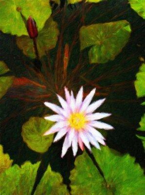 Lotus / Ölgemälde-Fotoeffekt