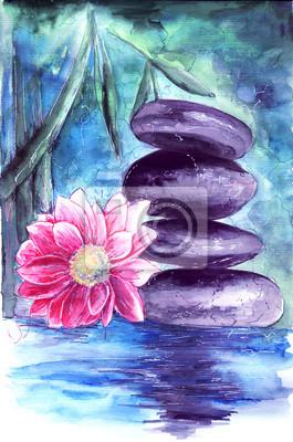 Lotus Und Steinen Im Wasser Fototapete Fototapeten Seerose