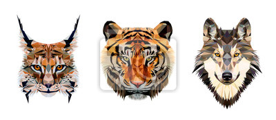 Fototapete Low poly triangular tiger, lynx and wolf heads on white background, vector illustration isolated.  Polygonal style trendy modern logo design. Suitable for printing on a t-shirt.