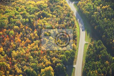 Luftaufnahme der geschwungene Straße durch den Wald im Herbst Farbe